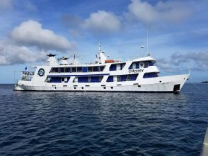 Dive Truk Lagoon aboard the Odyssey
