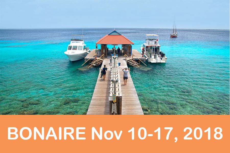 Bonaire 10-17, 2018