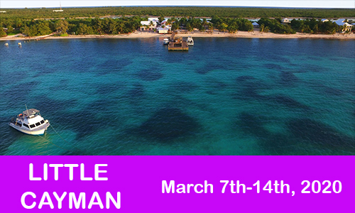 Little Cayman MArch 7th-14th, 2020