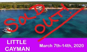Little Cayman SOLD OUT