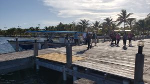 Dive Haven Dock Arrival